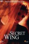La locandina di The secret wing