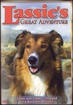 La locandina di Lassie: la grande avventura