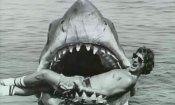 Otto volte Steven Spielberg in Blu – ray e DVD