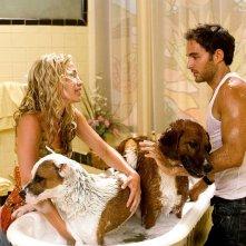 Piper Perabo e Manolo Cardona in una scena del film Beverly Hills Chihuahua
