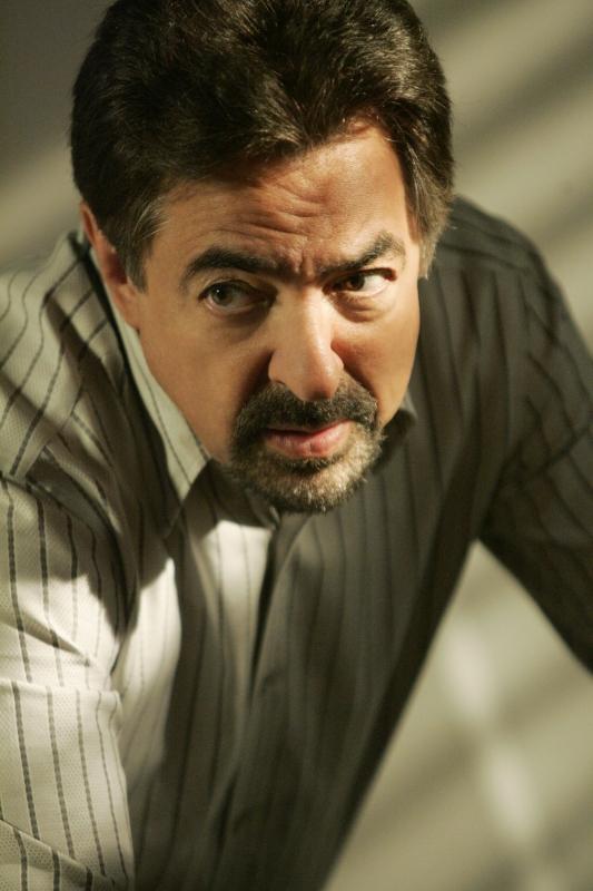 Un Primo Piano Di Joe Mantegna Nell Episodio The Instincts Della Quarta Stagione Di Criminal Minds 93346