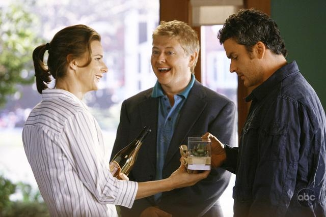 Dave Foley Insieme A Balthazar Getty E Rachel Griffiths In Un Momento Dell Episodio Going Once Going Twice Della Serie Tv Brothers Sisters 93871