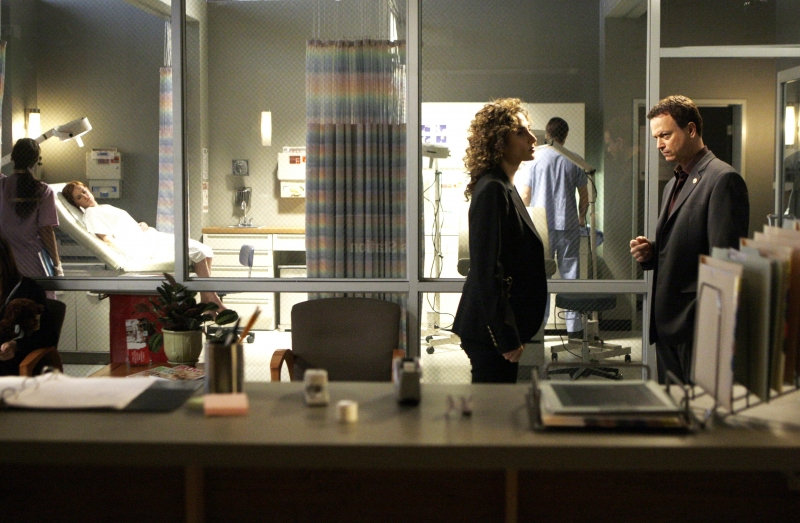 Melina Kanakaredes E Gary Sinise Nell Episodio My Name Is Mac Taylor Della Serie Tv Csi New York 96205