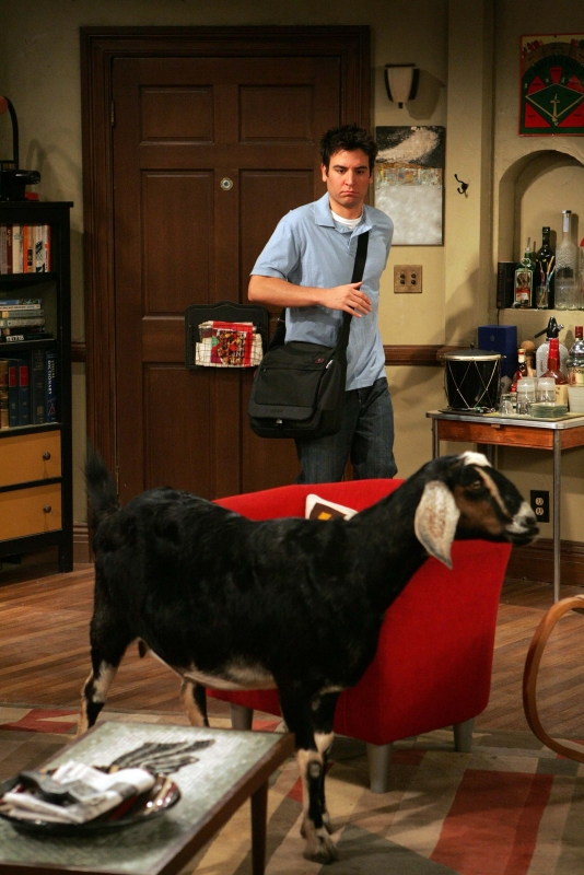 Josh Radnor Nell Episodio The Naked Man Di How I Met Your Mother 96384