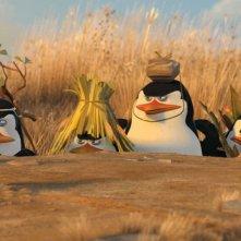 I pinguini del film Madagascar 2