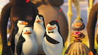 I pinguini di Madagascar 2 in una scena del film