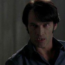 Stephen Moyer in un'immagine dell'episodio You'll Be the Death Of Me della serie True Blood