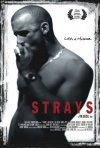 La locandina di Strays