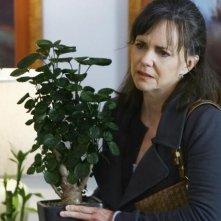 Sally Field in un momento dell'episodio 'Just a Sliver' della terza stagione di Brothers & Sisters