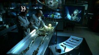 William Petersen con Robert David Hall in un momento dell'episodio ' 19 Down ' della serie CSI