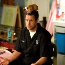 Adam Sandler in una scena del film Racconti incantati