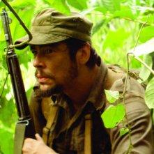 Benicio Del Toro interpreta Che Guevara nel film Che - L'Argentino