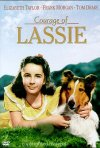 La locandina di Il coraggio di Lassie