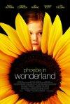 La locandina di Phoebe in Wonderland