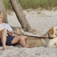 Owen Wilson in un'immagine del film Io & Marley