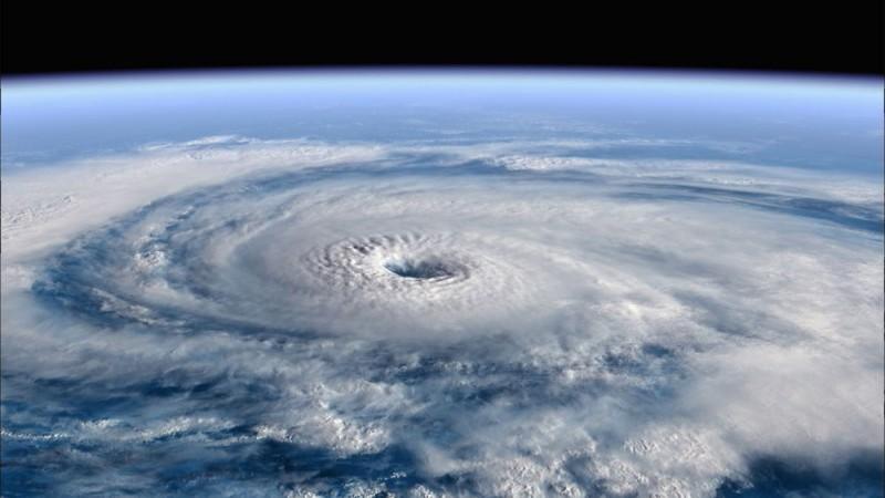 Una Scena Del Documentario Earth La Nostra Terra Diretto Da Alastair Fothergill E Mark Linfield 107760