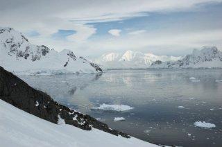 Un'immagine tratta dal documentario Earth - La nostra terra