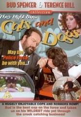 Cast E Personaggi Del Film Cane E Gatto 1983 Movieplayerit
