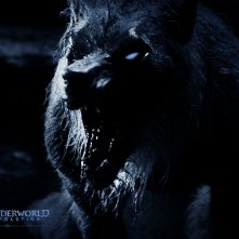 Un wallpaper di Brian Steele interpreta il licantropo William in 'Underworld: Evolution'