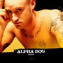 Un wallpaper di Ben Foster nel film 'Alpha Dog'
