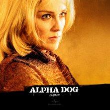 Un wallpaper di Sharon Stone nel film 'Alpha Dog'