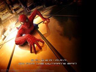 Un wallpaper per il film Spider-Man