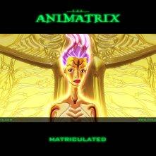 Un wallpaper dell'episodio 'Matriculated' di Animatrix
