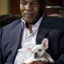Mike Tyson interpreta sé stesso nel film Una notte da leoni