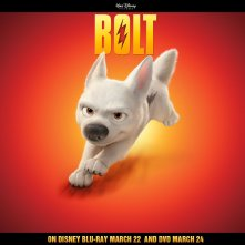 Un wallpaper di Bolt per pubblicizzare l'uscita in dvd e blu-ray del film 'Bolt - un eroe a quattro zampe'