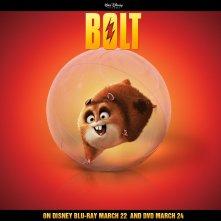 Un wallpaper di Rhino per pubblicizzare l'uscita in dvd e blu-ray del film 'Bolt'