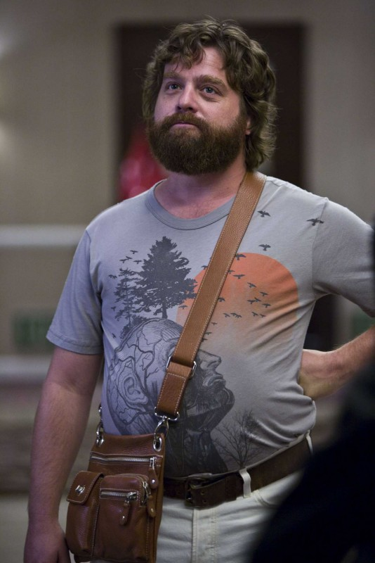 Zach Galifianakis interpreta Alan nel film Una notte da leoni