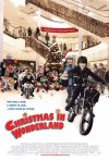 La locandina di Christmas in Wonderland