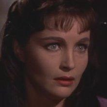 Yvonne Furneaux è Isobel Banning nel film La mummia