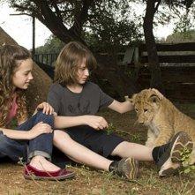 Una foto di scena della serie L'Africa nel cuore