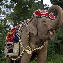 Una scena della serie The Elephant Princess