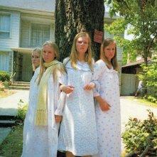 Le sorelle Lisbon: Kirsten Dunst, Leslie Hayman, Chelse Swain e A.J. Cook proteggono l'albero in una scena del film 'Il giardino delle vergini suicide'