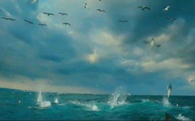 Wild Ocean 3D - Trailer