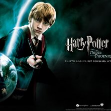 Un wallpaper ufficiale per Harry Potter and the Order of the Phoenix con Rupert Grint