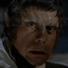 La trasformazione in lupo mannaro di Oliver Reed nel film L\'implacabile condanna