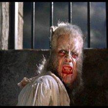Oliver Reed trasformato in licantropo una scena del film L\'implacabile condanna