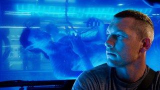 Sam Worthington in una scena del film Avatar