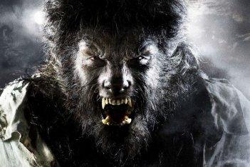 Benicio Del Toro in un'immagine di The Wolf Man