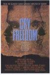 La locandina di Grido di libertà