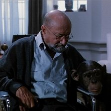 Donald Pleasence in una scena del film Phenomena (1985)