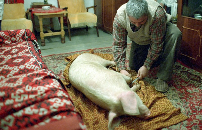 Un Immagine Del Film A Episodi Racconti Dell Eta Dell Oro 130690