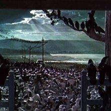La celebre sequenza finale del film Gli uccelli ( 1963 )