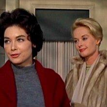 Tippi Hedren e Suzanne Pleshette in una scena del film Gli uccelli ( 1963 )