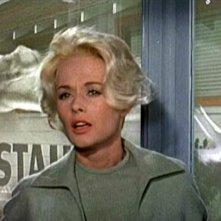 Tippi Hedren in una celebre scena del film Gli uccelli ( 1963 )