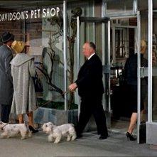 Alfred Hitchcock in un cameo nel film Gli uccelli ( 1963 )