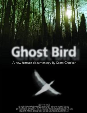 La Locandina Di Ghost Bird 132018